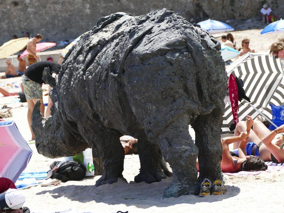 Le rhino sur la plage de la Gravette ne laisse pas indifférent les vacanciers.