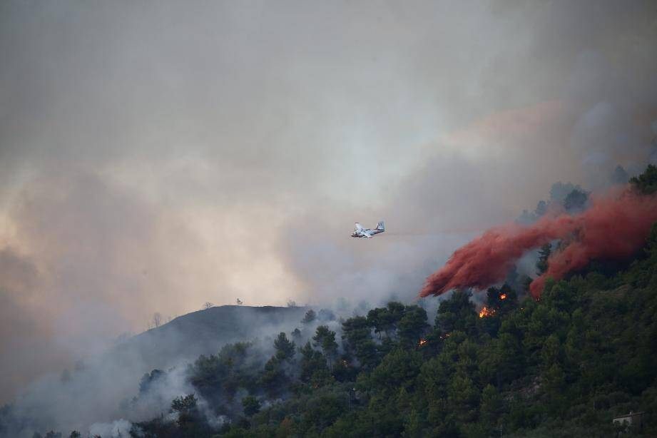 Cinq Tracker, un Dash, trois hélicoptères bombardiers d'eau et 250 sapeurs-pompiers ont été mobilisés.