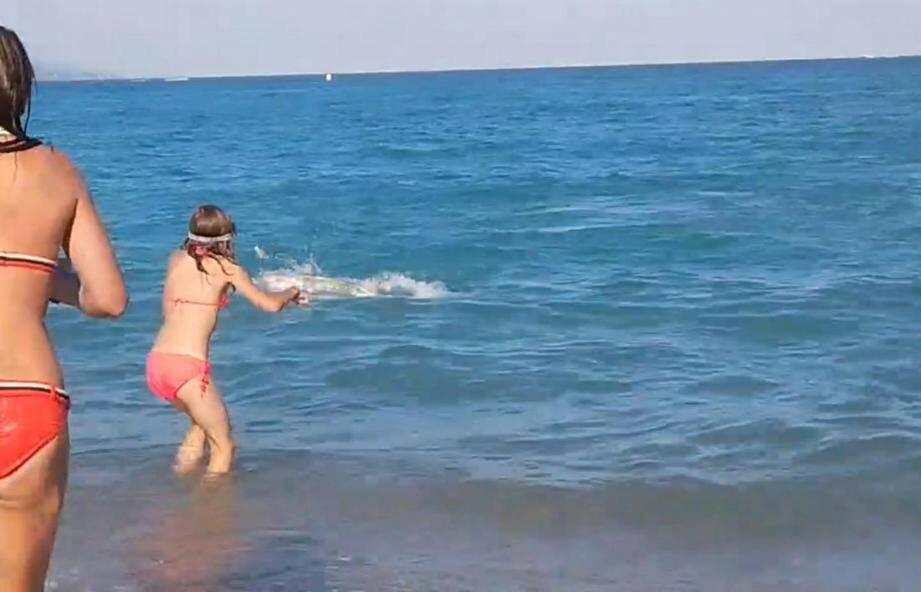 La baignade a été brutalement interrompue hier en fin d'après-midi entre La Siesta et le Fort Carré à Antibes.(DR)