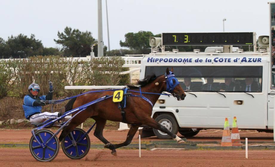 Timoko, le cheval le plus riche du pays fera ses adieux à l'Hexagone ce samedi soir à Cagnes.(Archive Eric Ottino)