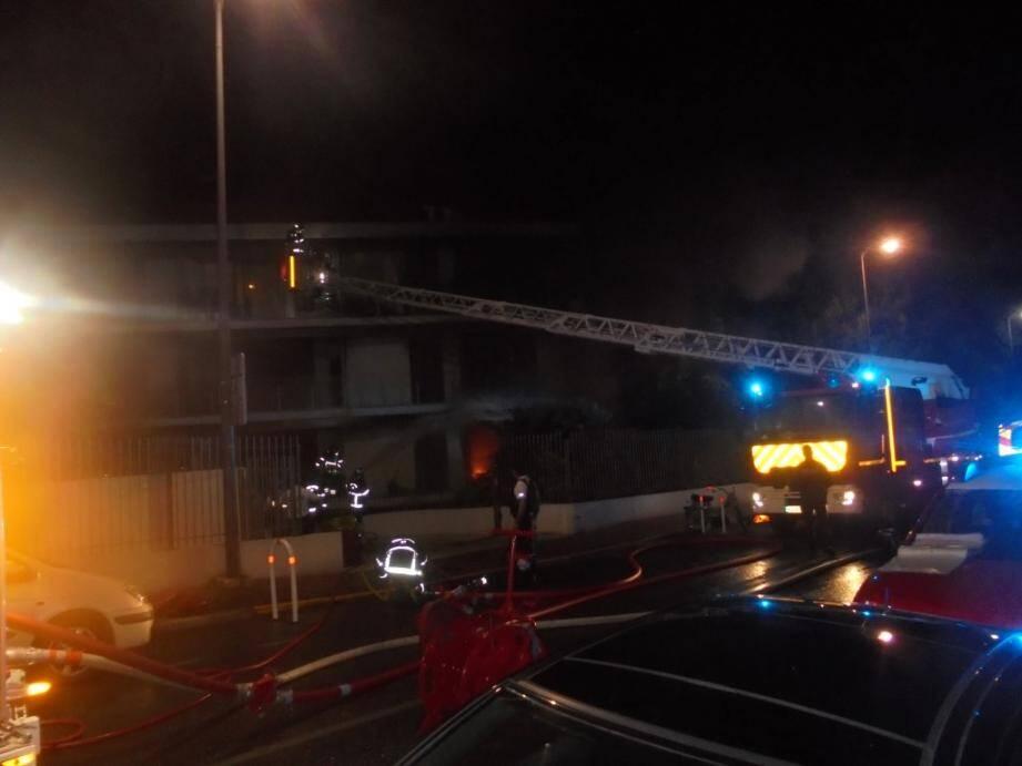 Les pompiers ont lutté pour maîtriser l'incendie, qui a tué un chien.