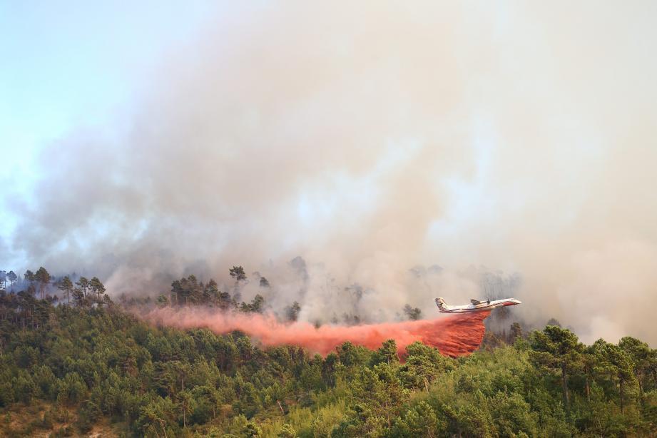 L'incendie a parcouru 70 hectares de forêt.
