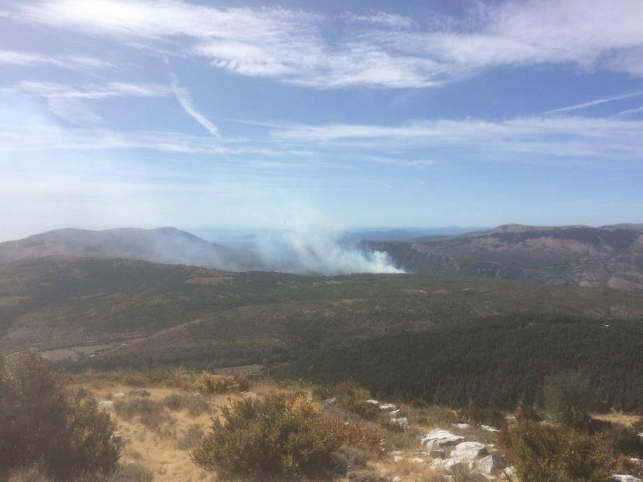 L'incendie s'est déclaré vers 10h30 sur le plateau de Saint-Barnabé, non loin du col de Vence.