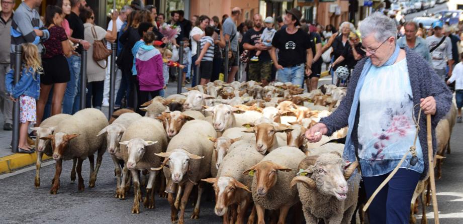 Le défilé des moutons, vaches et chevaux a, cette année encore, attiré de nombreux curieux sur l'avenue principale de la commune.