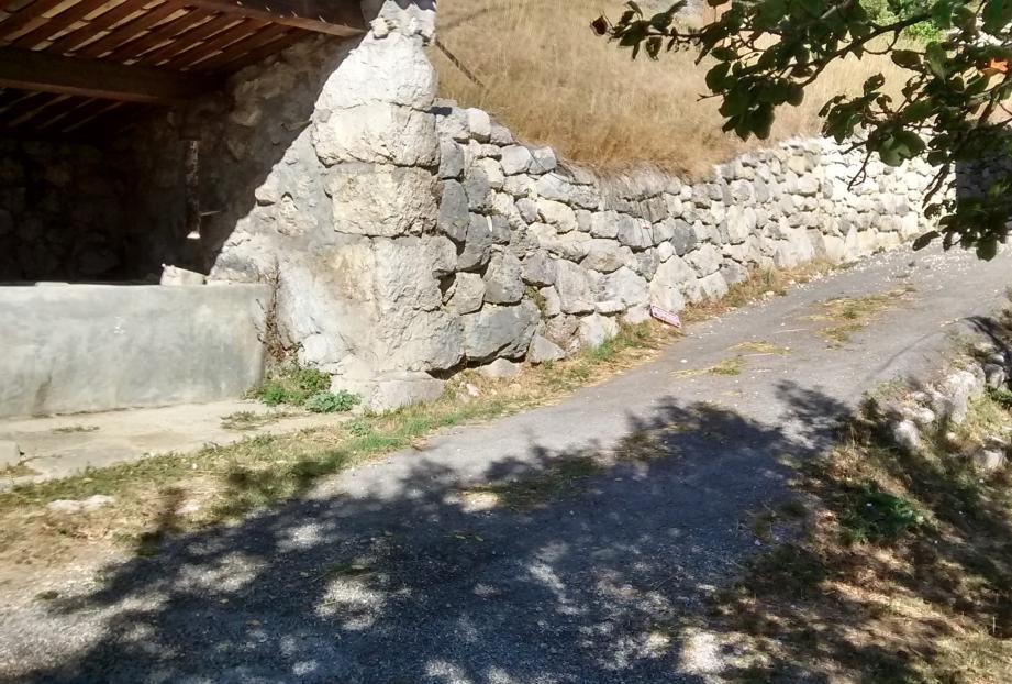 Ci-dessus, le lieu où Geisha a été abattue. À droite, la chienne et sa maîtresse Martine, lors d'une randonnée.