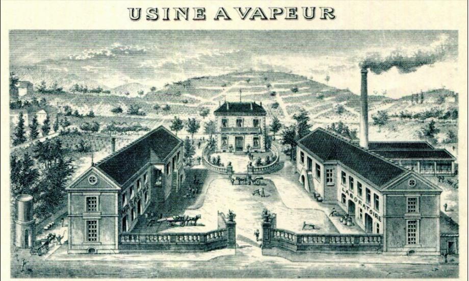 Bâti ou naturel, le patrimoine souffre. Que faire de la villa Carbonel, avenue du Tapis-Vert, une parfumerie (photos du haut). En bas, à gauche, le sentier du littoral n'existe plus. À droite, le site archéologique de l'oppidum est dégradé.(DR)
