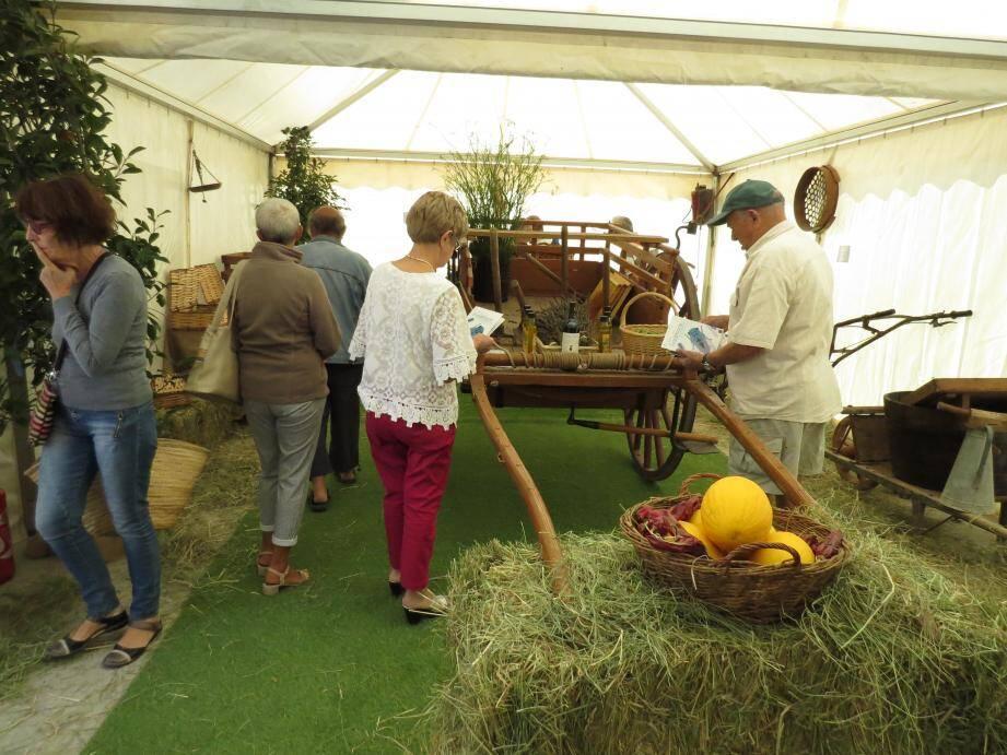 Du matériel agricole d'antan est exposé sous chapiteau sur le port. Et, bien sûr, la Provence est à l'honneur, avec la présence de groupes folkloriques et de costumes traditionnels.