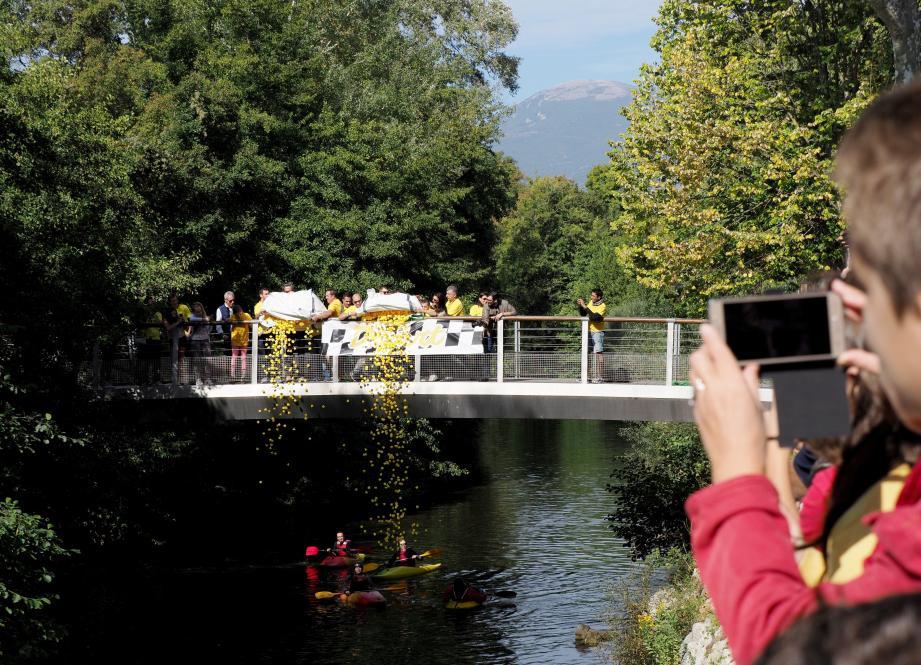 Avec un peu de retard, le lâcher des 12 300 canards depuis le pont du Loup a fait son petit effet aux spectateurs et propriétaires d'un jour venus encourager leur mascotte. Un moment festif, familial et solidaire.