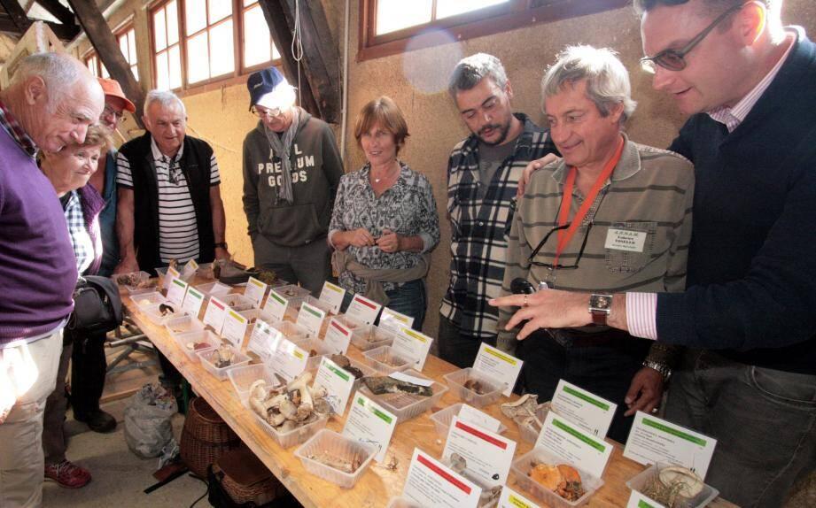 Cèpes, bolets, girolles, amanites, morilles, chanterelles, lactaires, coulemelles..., et bien d'autres ont fait l'objet d'une exposition didactique par les mycologues de l'ANNAM.