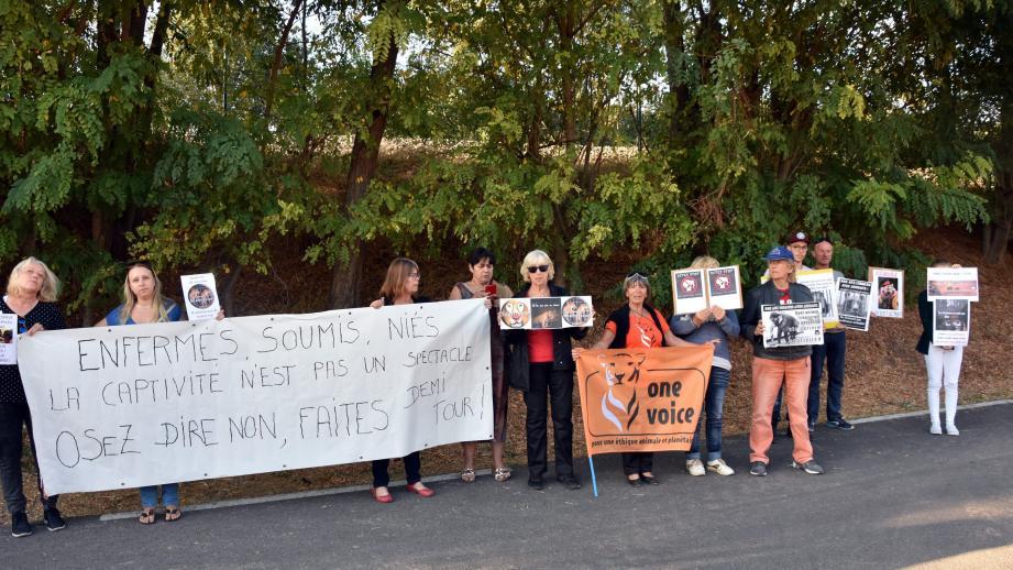 Le collectif VESEA a manifesté, dans le calme, contre toute forme d'exploitation animale.