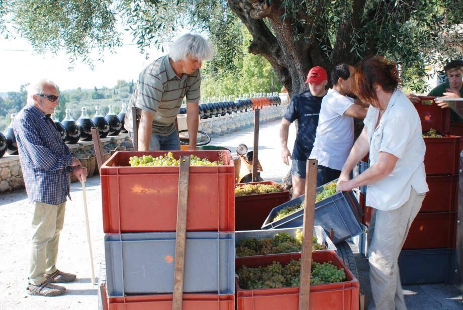 Il y a quatre ans, René, ici à gauche, présent lors d'une étape importante du travail du raisin qui a accompagné toute sa vie.