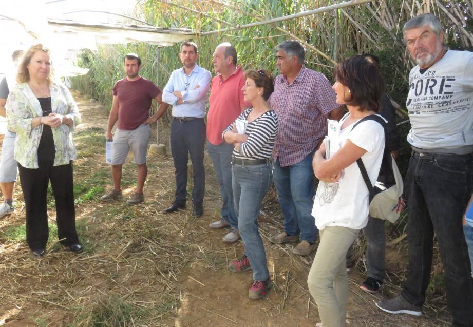 L'auditoire a suivi le retour d'expérience de la lutte contre les nématodes, présenté par Caroline Djian-Caporalino de l'Inra Paca  (à gauche).