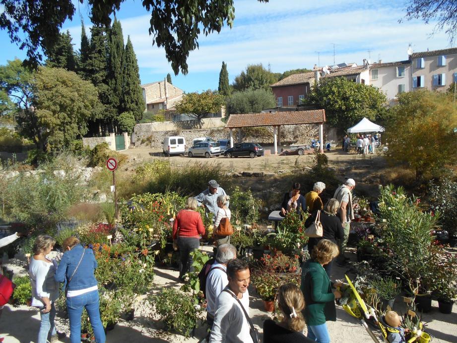 De chaque côté des berges, les visiteurs ont montré de l'intérêt pour les plantes.