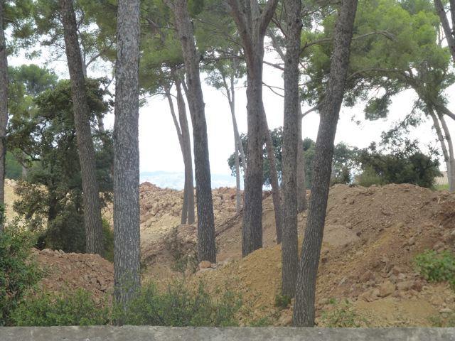 Pour l'Association Michel Pacha, la terre et les rochers issus du décaissement du terrain ne devraient pas être stockés sur cette parcelle mitoyenne, puisqu'elle est classée en Espace boisé classé.