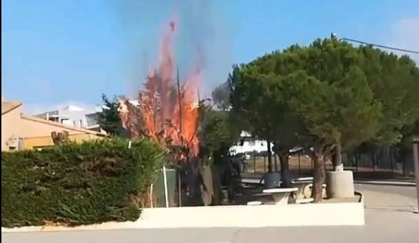 Elle a tenté d'éteindre le début d'incendie avant l'arrivée des pompiers.