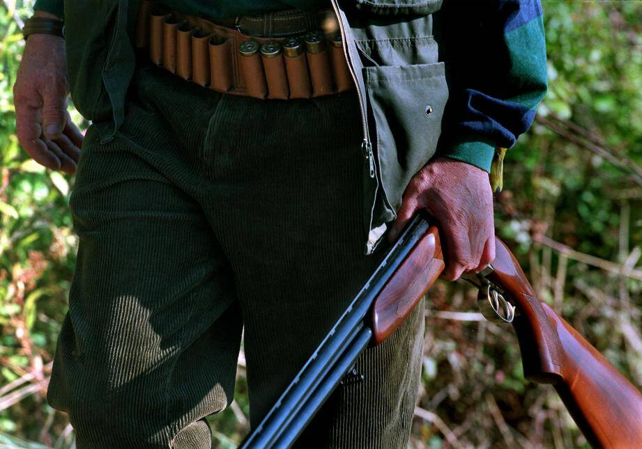 Illustration de la chasse.