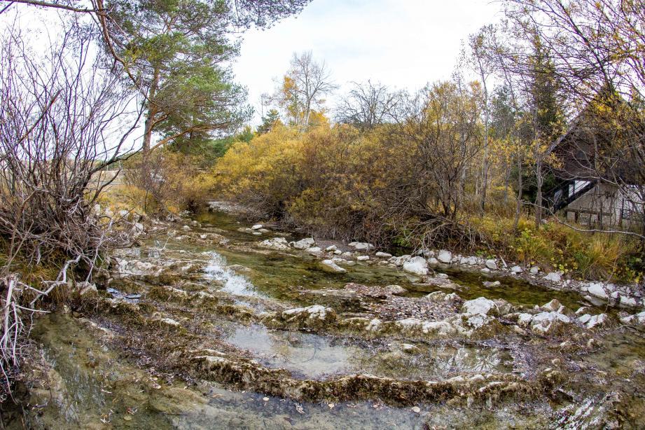 Avec six mois sans pluie, l'Estéron, ici juste avant de se jeter dans la clue de Saint-Auban, n'est pas à sec… Contre toute attente.