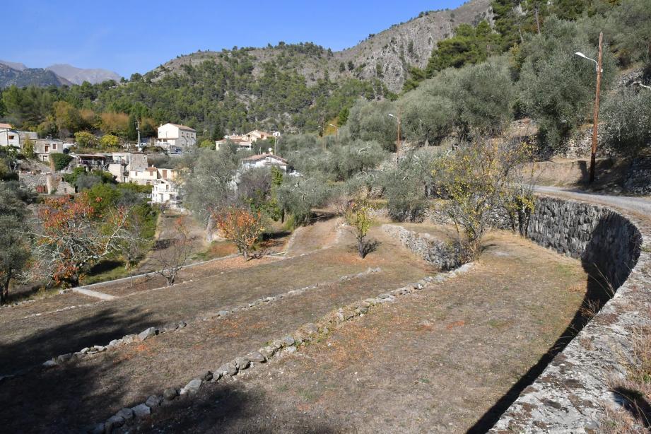 Au hameau de Libre, à Breil-sur-Roya, la sécheresse se constate à chaque virage.