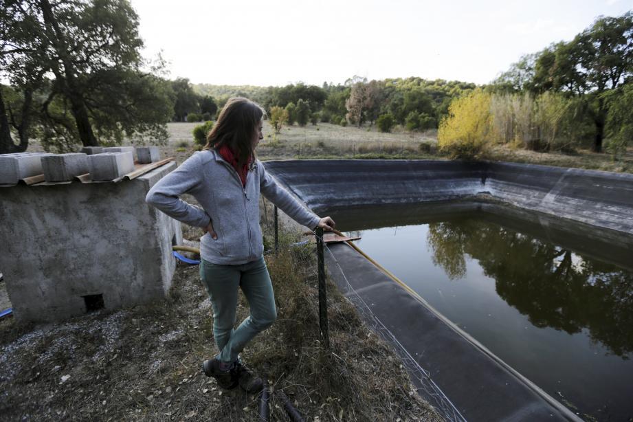Dans la seule réserve d'eau de l'exploitation, il reste tout juste un mètre d'eau.