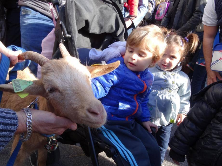 Les enfants à la découverte des animaux de la ferme.