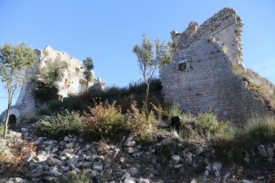 Le château du Castellas à Forcalqueiret avait été présélectionné.