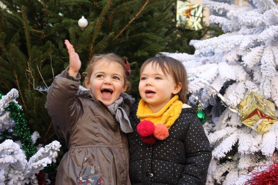 Comme dans un conte de Noël, bien évidemment, une petite agnelle est née vendredi soir dans la ferme installée au village pour les fêtes. Pour le plus grand bonheur des enfants.