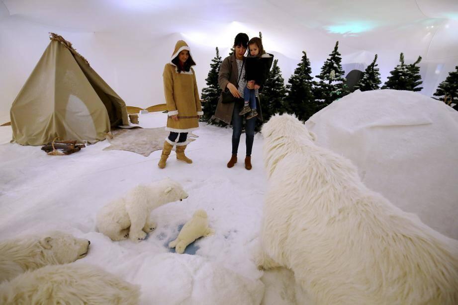 L'Arctique, les fonds marins, le bassin tactile : au moins trois bonnes raisons de visiter le Musée océanographique pendant les vacances de Noël.