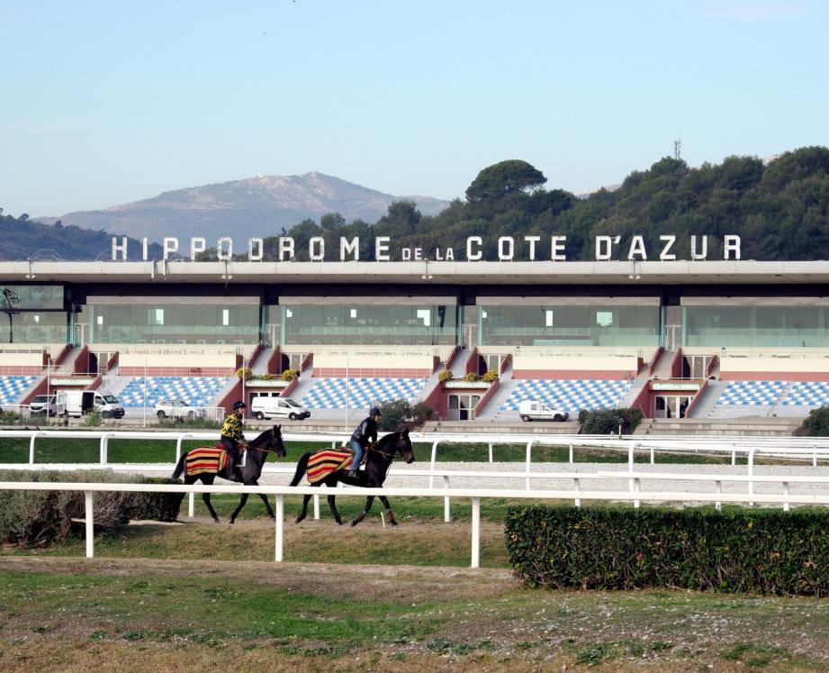 Dans les écuries de l'hippodrome, plusieurs chevaux ont subi des examens pour savoir s'ils étaient atteints par le virus. Au final, un cheval est malade.