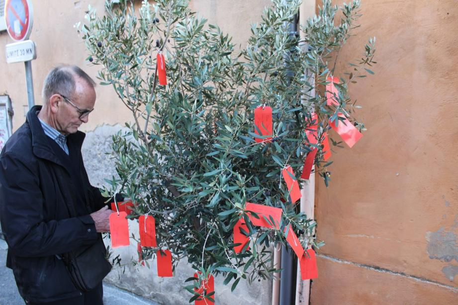 L'arbre à souhaits recueille les vœux des Biotois pour cette nouvelle année.
