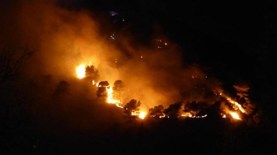 Le sinistre s'est déclaré vers 20 heures, à la suite de la rupture d'une ligne à haute tension, dans le quartier boisé de La Plana.