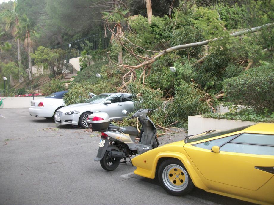 À Vallauris, un vieux modèle de Lamborghini n'a subi que quelques éraflures.