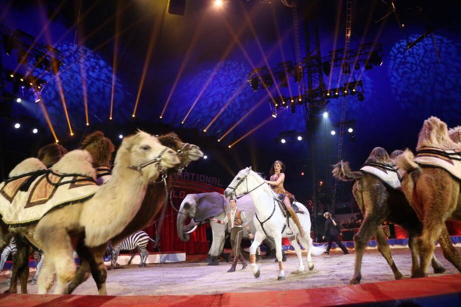 Le couple Richter et ses animaux ont été les grandes stars de la soirée de gala.