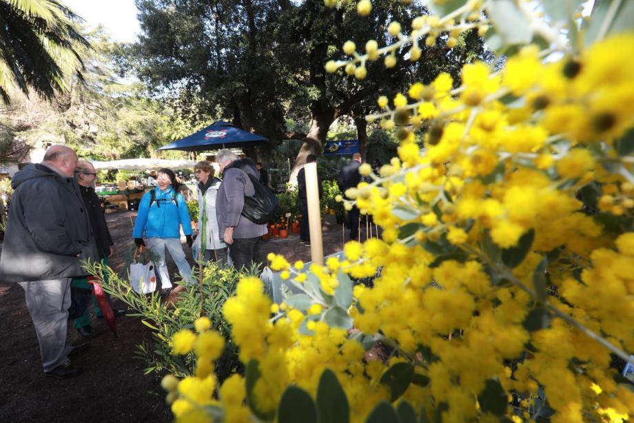 Parc du Cigalou, les pépiniéristes collectionneurs attirent les jardiniers passionnés, venus souvent de très loin.
