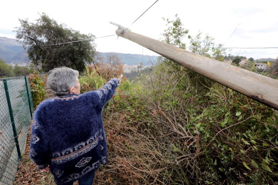 Un poteau de France Télécom est tombé dans le jardin de Madame Merello.