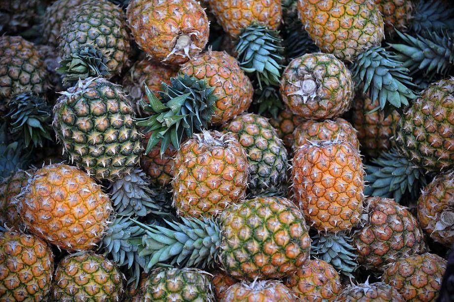 Illustration ananas.