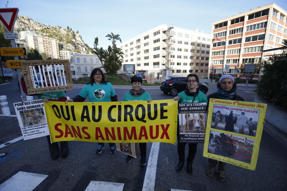 Le Collectif animalier 06 a dénoncé l'utilisation des animaux dans le cirque à la frontière monégasque.