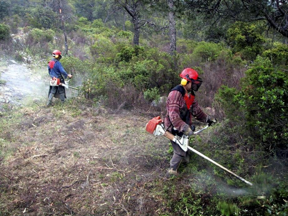 A Cagnes, l'ONF inspecte les terrains de manière aléatoire.