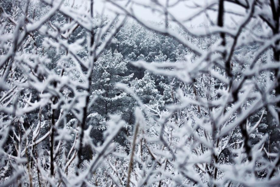 La neige à Draguignan, le 26 février.