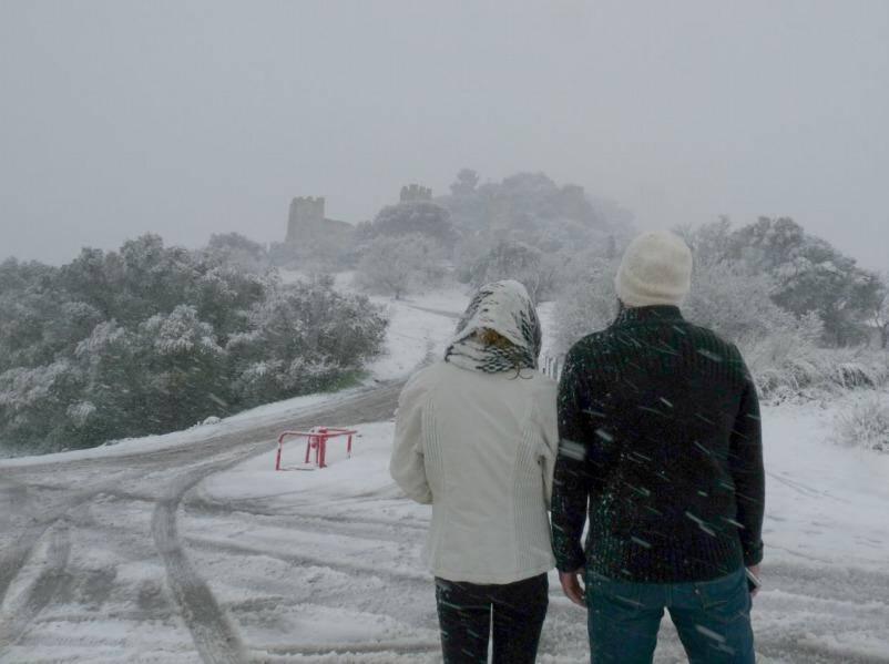 A Hyères, sur la colline du château.
