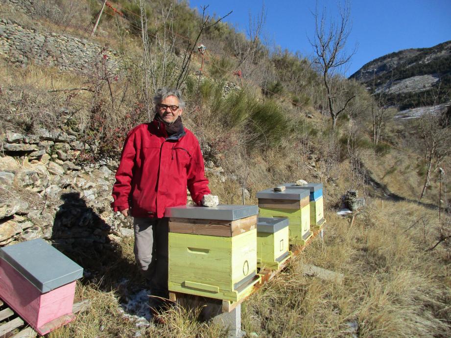 Franck Servetti dans son rucher de la Pia, à 950 mètres d'altitude, où les abeilles pourront aller butiner des fleurs des prés, du thym, des conifères et de multiples essences de montagne.