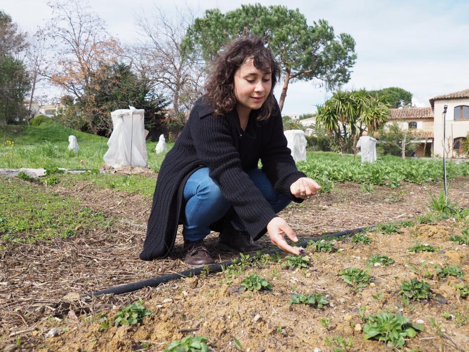 Privilégier l'agriculture locale et le circuit plus que court : tel est le message promu par les apprentis.