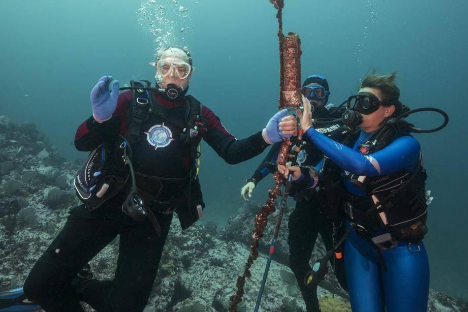Dans l'aire marine protégée de Malpelo en Colombie, le souverain a plongé avec Sandra  Bessudo et Pierre Frolla, pour baliser plusieurs requins.