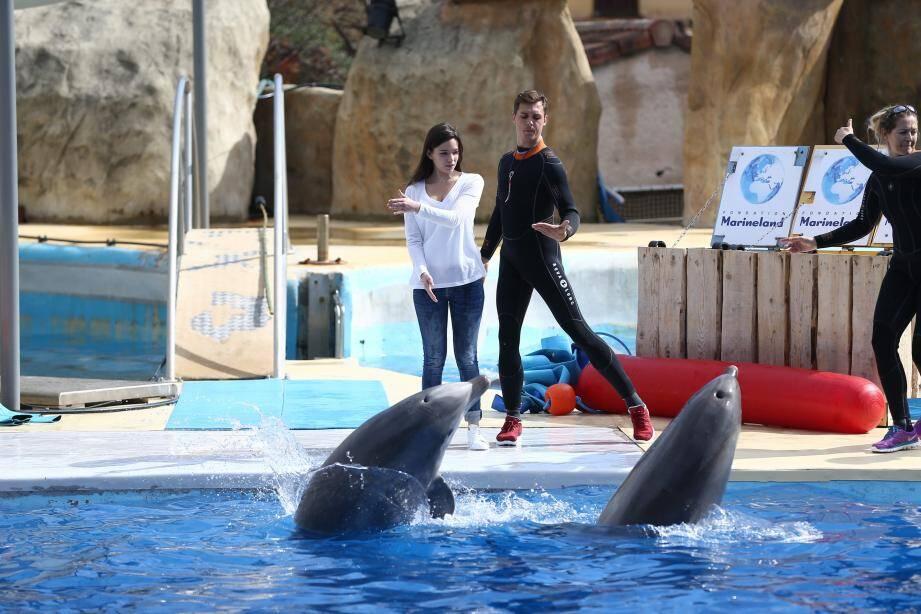 En participant à cette expérience, les visiteurs pourront approcher les animaux de très près.