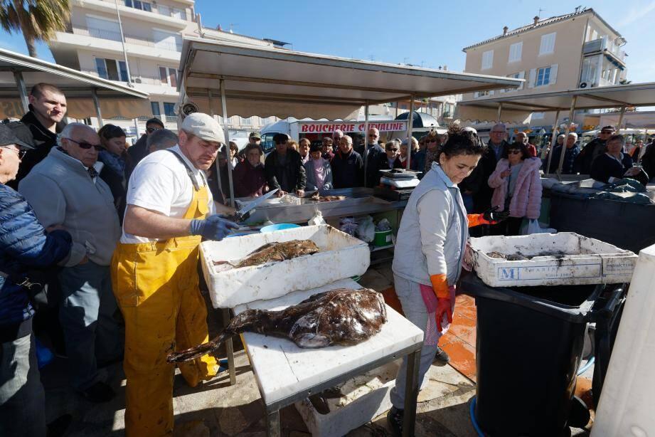 Arrivage frais, sur l'étal du poissonnier à Sanary.