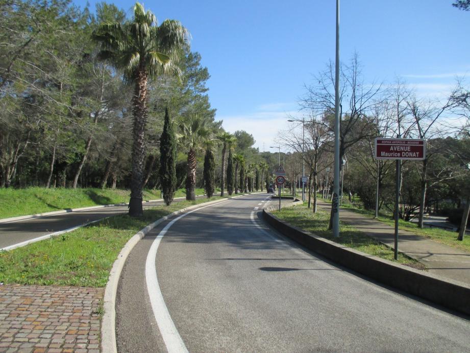 L'avenue Maurice Donat servira de point d'entrée vers le complexe sport-santé.