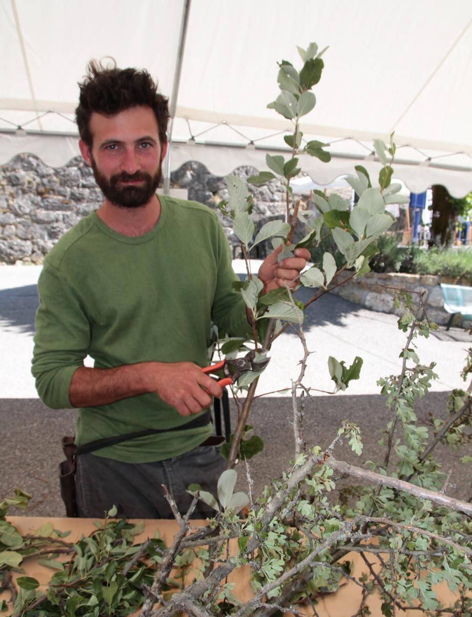 Davide Fabbri, agriculteur de la Sagne, ici lors d'un atelier greffe à Collongues.