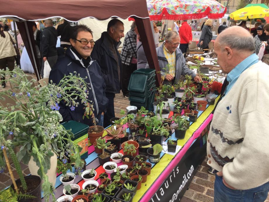 Le troc de plantes organisé par le «Damier» aura lieu samedi toute la journée dans le cadre de la fête du Printemps.