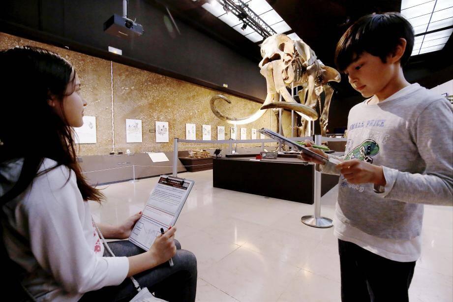 Le Musée d'Anthropologie préhistorique. Ou comment apprendre en s'amusant!