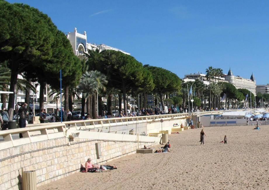 La Croisette à Cannes Photo