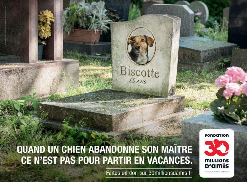 Le film de la Fondation 30 Millions d'Amis, réalisé par Xavier Giannoli, met en scène l'histoire de la relation exceptionnelle qui s'établit entre maître et chien.
